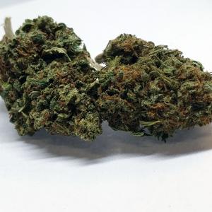 Elektra (Premium Flower)